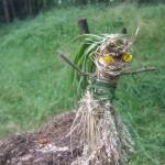Grass dolly